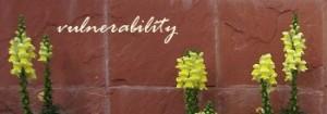 vulnerability (1)