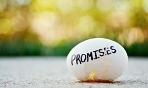 promise egge back